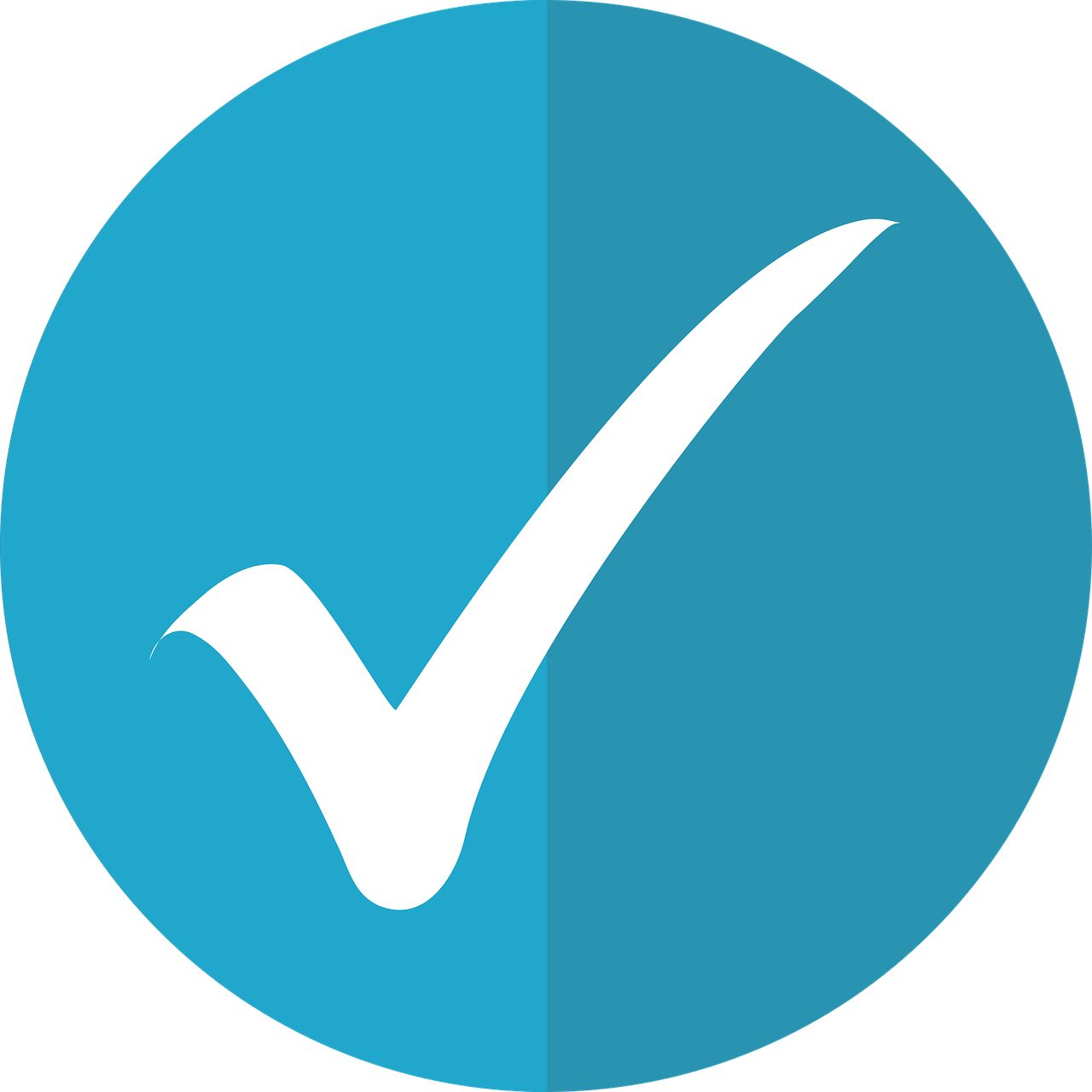 checkmark-icon-2797531_1280